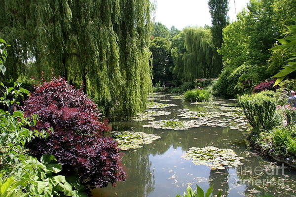 Claude Monet Photograph - View Over The Lilypond - Monets Garden by Christiane Schulze Art And Photography