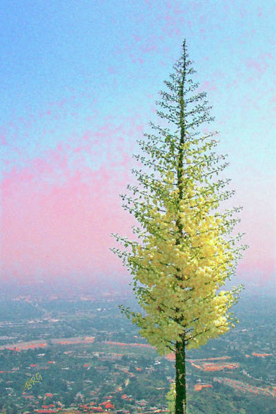 Photograph - View With Blooming Yucca by Ben and Raisa Gertsberg