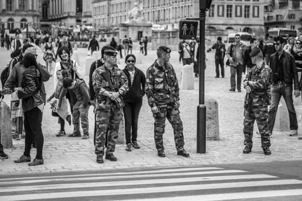 Photograph - Vigilance by Ross Henton