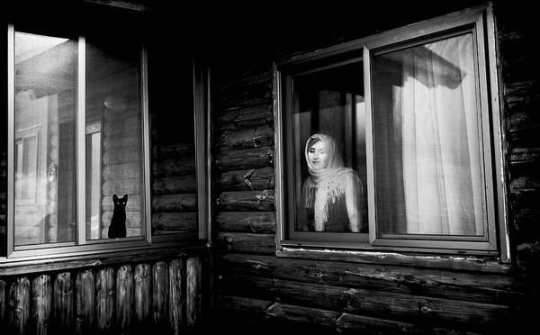 Edit Wall Art - Photograph - Vika by Yuri Shepelev