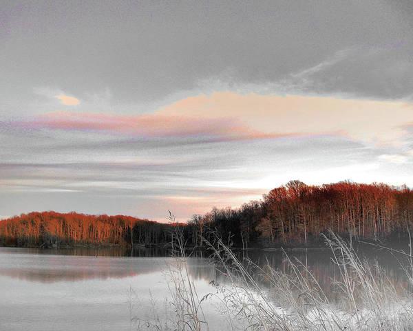 Digital Art - Village Creek Ar Morning by Lizi Beard-Ward