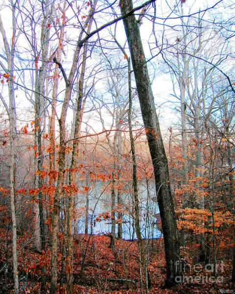 Digital Art - Village Creek State Cabins View by Lizi Beard-Ward
