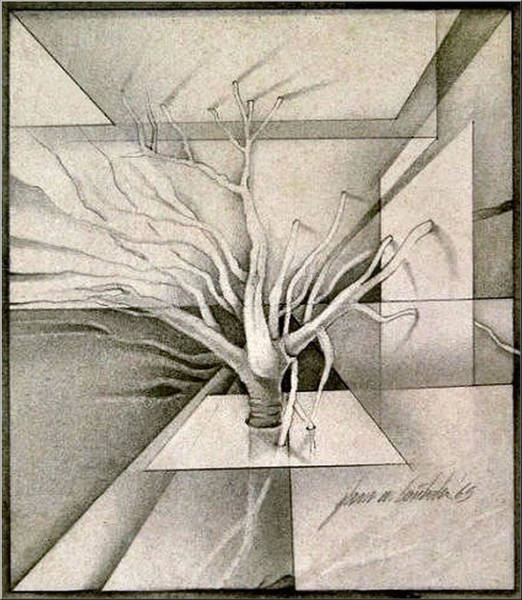 Vine And Branches B 1969 Art Print