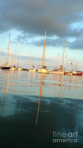 Squid Row Photograph - Vineyard Haven Harbor by Matt Dana