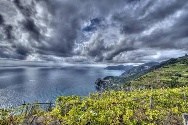 Vineyards Above Cinque Terre Art Print