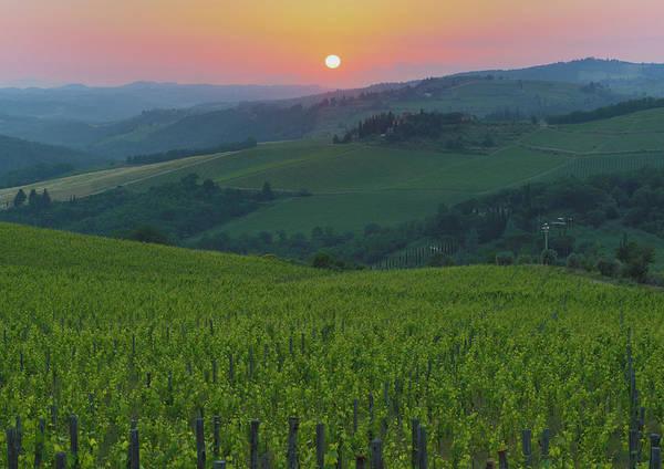 Tuscany Photograph - Vineyards, Chianti Region, Tuscany by Ken Welsh