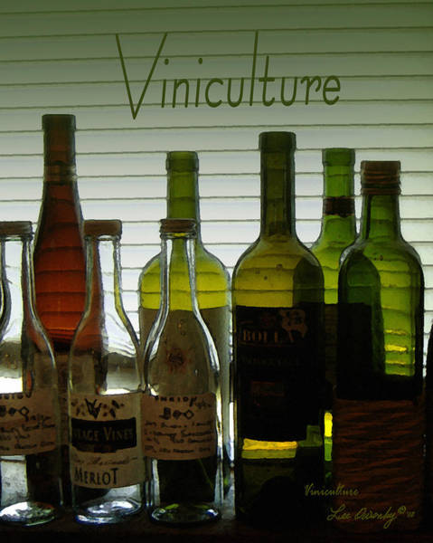 Photograph - Viniculture  by Lee Owenby
