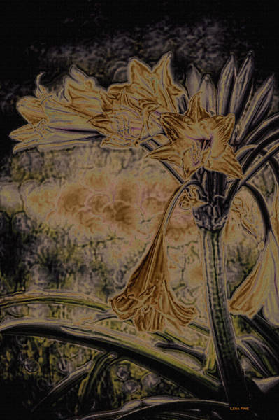 Yellow Trumpet Mixed Media - Vintage Angel Trumpet Art Golden by Lesa Fine
