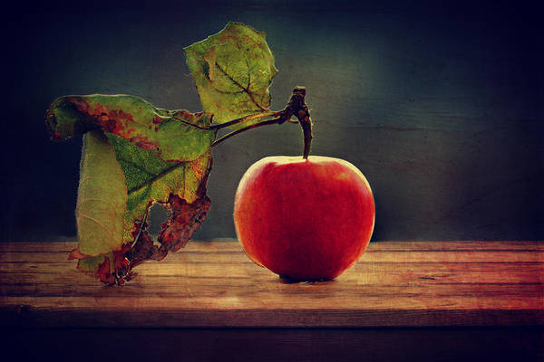 Eating Mixed Media - Vintage Apple by Heike Hultsch