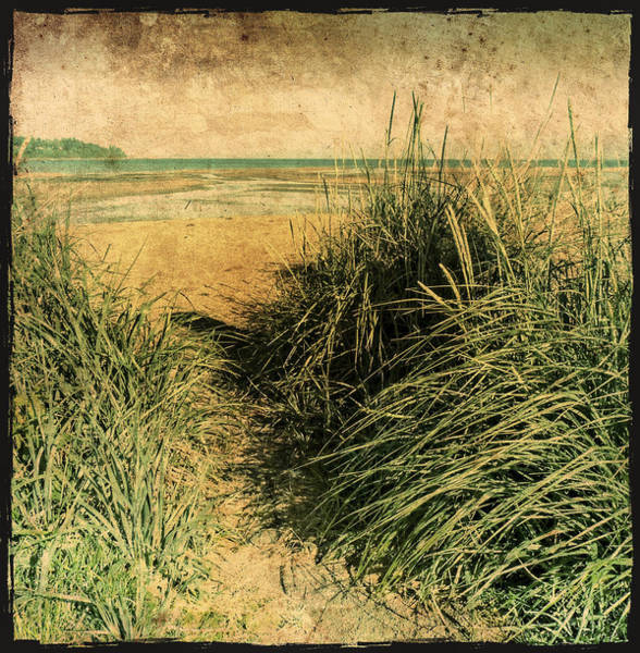 Photograph - Vintage Beach  by Roxy Hurtubise