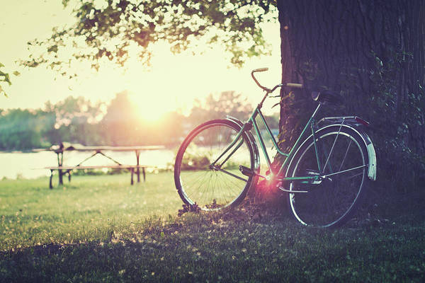 Old Montreal Photograph - Vintage Bicycle At Sunset by Linda Raymond