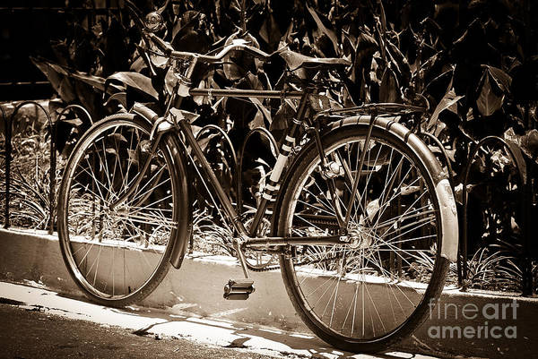 Photograph - Vintage Bike by Carlos Alkmin