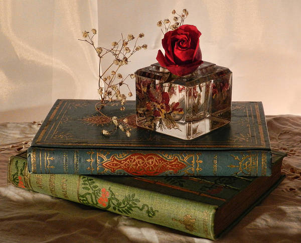 Photograph - Vintage Books by Grace Dillon