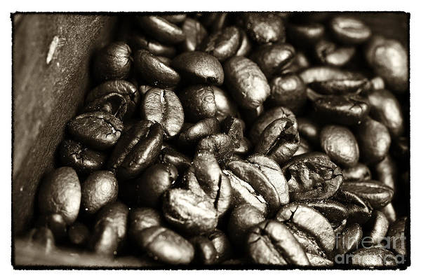 Photograph - Vintage Coffee Beans by John Rizzuto