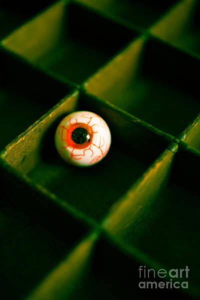 Depth Of Field Photograph - Vintage Fake Eyeball by Edward Fielding
