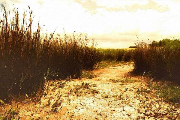 Painting - Vintage Fields by Florian Rodarte