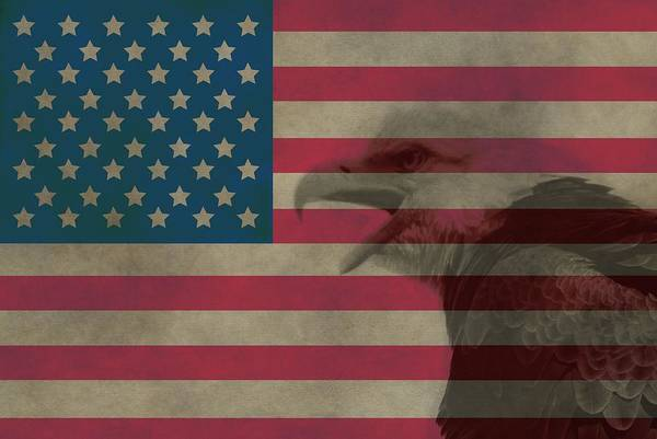 Wall Art - Photograph - Vintage Flag With Bald Eagle by Dan Sproul