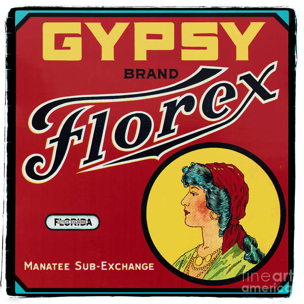 Vintage Photograph - Vintage Florida Food Signs 2 - Gypsy Florex Brand - Square by Ian Monk