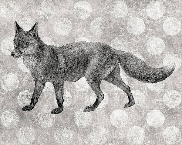 Gray Fox Art Print by Flo Karp