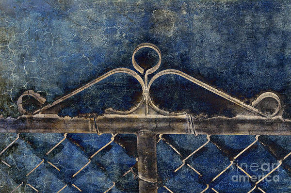 Chain Link Photograph - Vintage Gate - Fence - Chain Link - Texture - Abstract by Andee Design