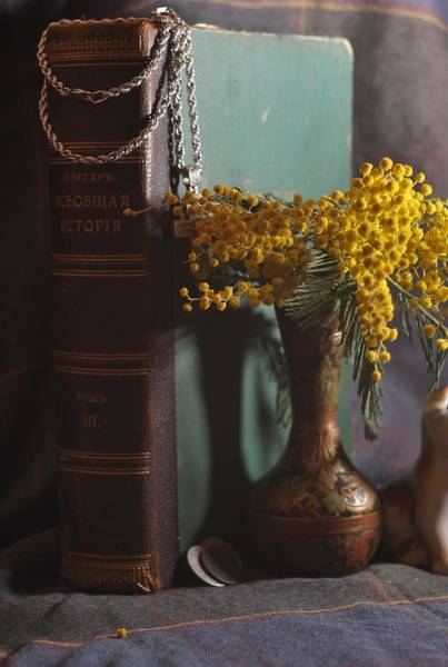 Still Life Wall Art - Photograph - Vintage Group With An Old Book And Mimosa   by Anna Aybetova