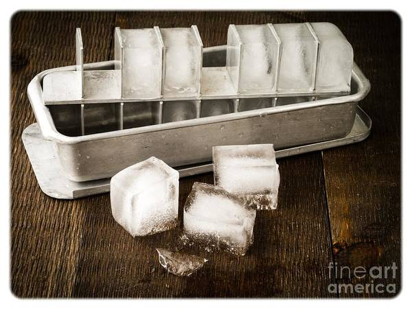 Vintage Photograph - Vintage Ice Cubes by Edward Fielding