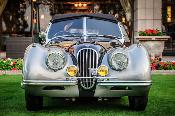 Photograph - Vintage Jaguar -0924c by Jill Reger