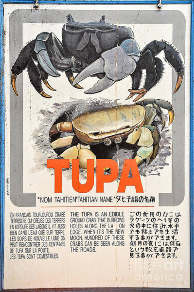 French Polynesia Photograph - Vintage Market Sign 4 - Papeete - Tahiti - Tupa - Crab by Ian Monk