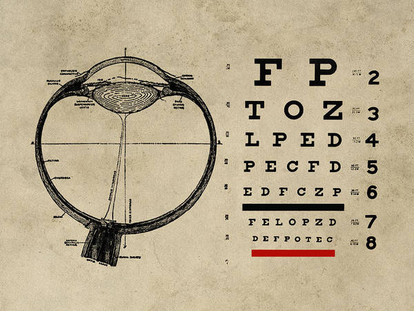 Anatomy Digital Art - Vintage Ophthalmologist Eye Chart by Flo Karp