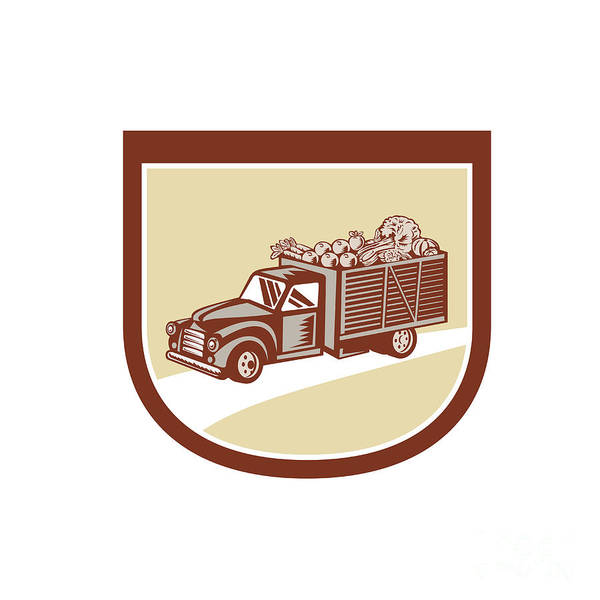 Pick Up Truck Digital Art - Vintage Pickup Truck Delivery Harvest Shield Retro by Aloysius Patrimonio