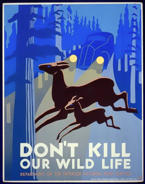 Car Drawings Mixed Media - Don't Kill Our Wild Life - 1940 by Mountain Dreams