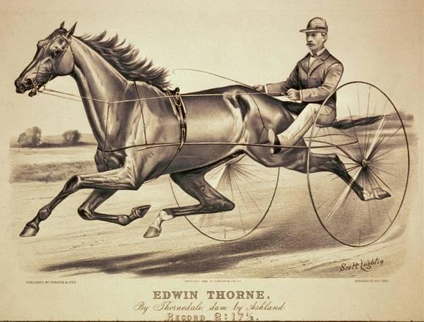 Digital Art - Vintage Racing Poster Of Edwin Thorne by Lesa Fine