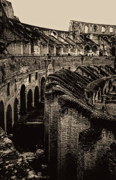 Photograph - Vintage Roman Colosseum by Donna Proctor
