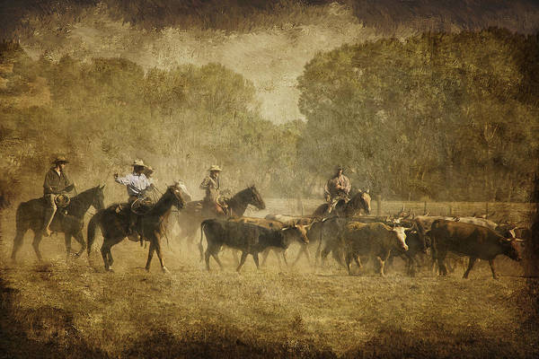 Roping Photograph - Vintage Roundup by Priscilla Burgers