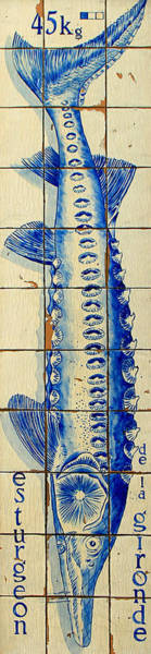 Photograph - Vintage Seafood Sign 4 by Andrew Fare