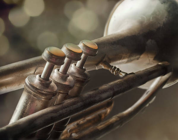 Trumpet Photograph - Vintage Trumpet by David and Carol Kelly