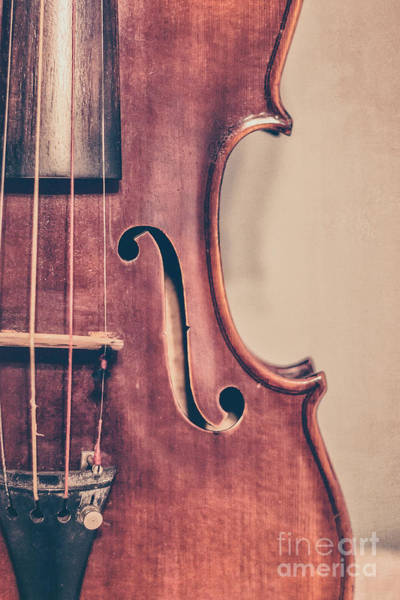 Violin Wall Art - Photograph - Vintage Violin Portrait 2 by Emily Kay
