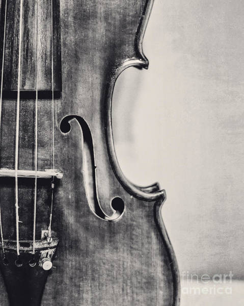 Violin Wall Art - Photograph - Vintage Violin Portrait In Black And White by Emily Kay