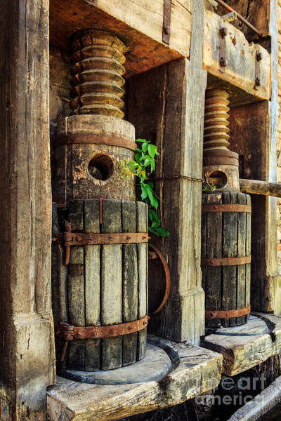 Photograph - Vintage Wine Press by James Eddy