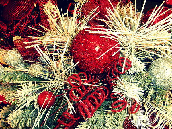 Yule Photograph - Vintage Winter Red  by Janine Riley
