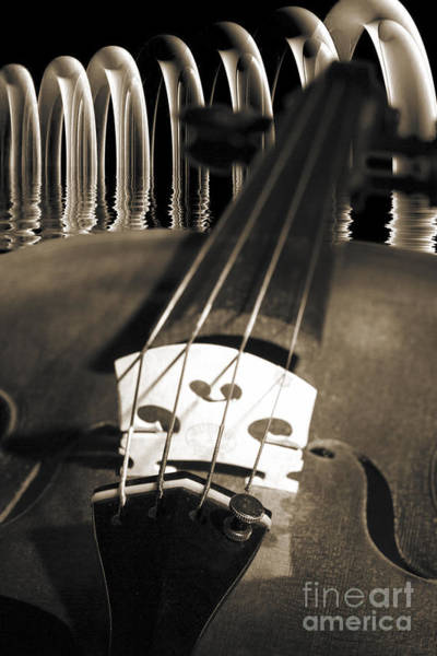 Photograph - Viola Violin In A Fantasy World In Sepia 3067.01 by M K Miller