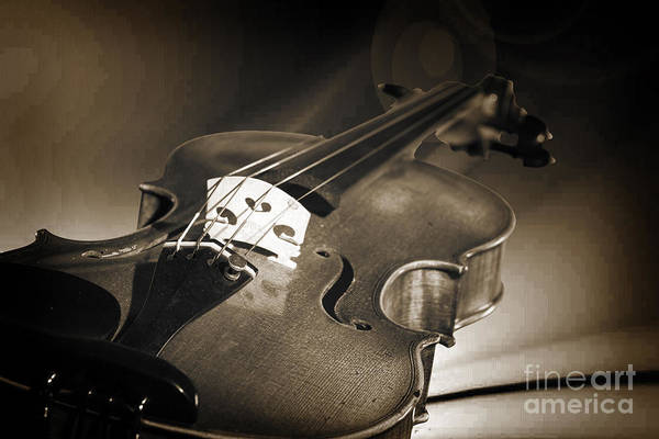 Photograph - Viola Violin On A Cloth Background In Sepia 3072.01 by M K Miller