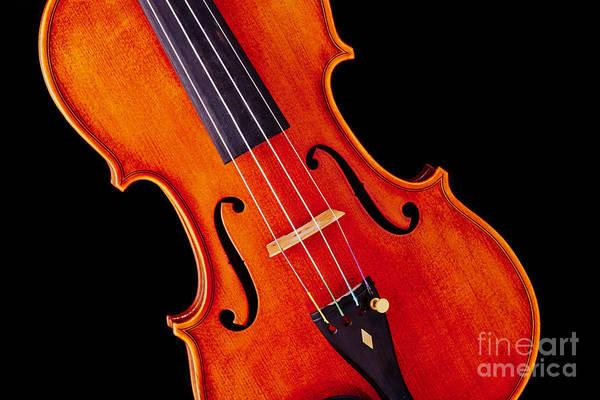 Photograph - Viola Violin Photograph Strings Bridge In Color 3263.02 by M K Miller