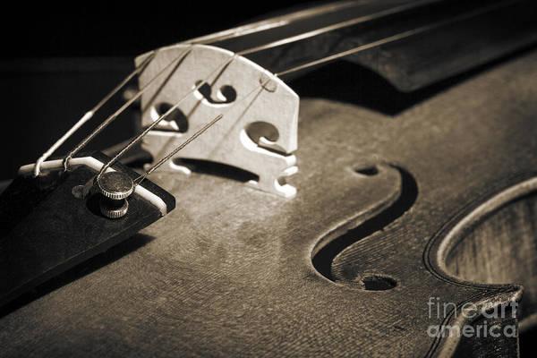 Photograph - Viola Violin String Bridge Close In Sepia 3076.01 by M K Miller
