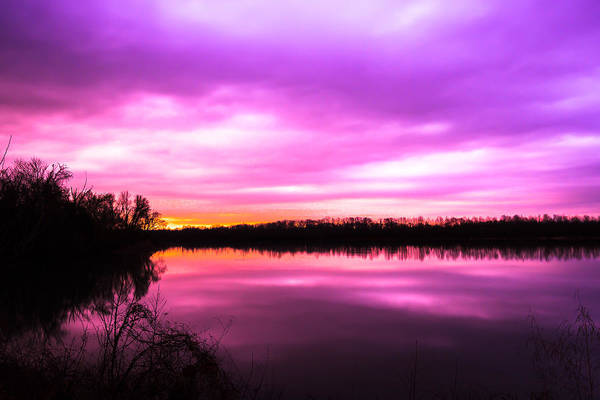 Photograph - Violet Sky by Larry McMahon