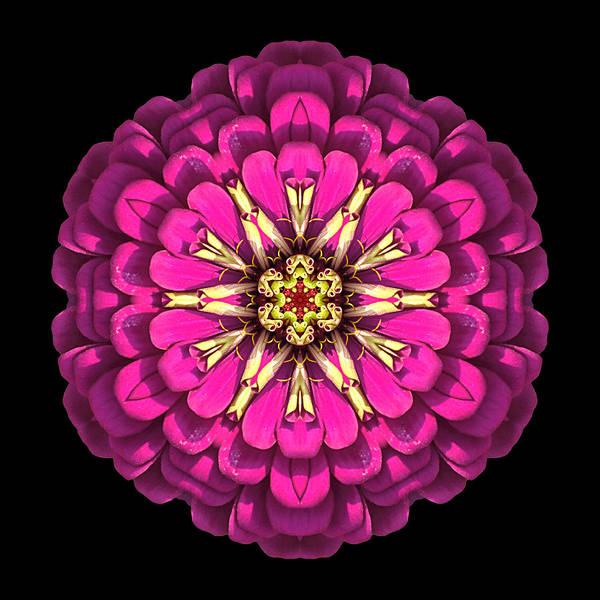 Photograph - Violet Zinnia Elegans Flower Mandala by David J Bookbinder