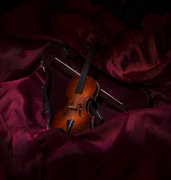 Blye Photograph - Violin by Kenneth Blye