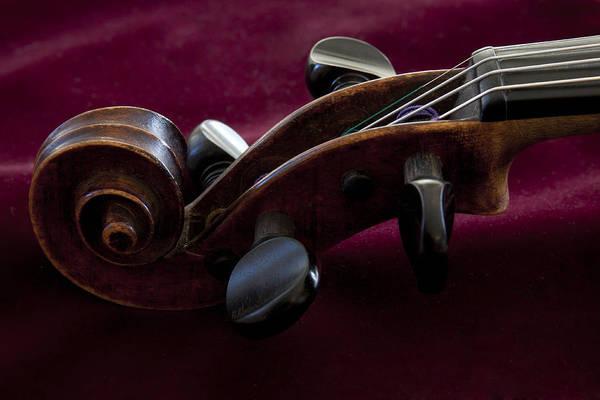Violin On Deep Red Art Print