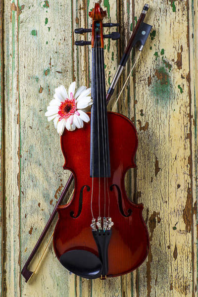 Paint Chips Photograph - Violin On Old Door by Garry Gay