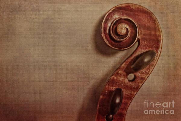 Violin Wall Art - Photograph - Violin Scroll by Emily Kay